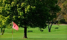 18-Hole Round of Golf for Two or Four with Carts and Drinks at Olmsted Park Golf Courses (Up to 56% Off)