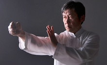4 or 12 Beginner's Chinese Boxing Classes at North Jersey Wing Chun Kung Fu (Up to 83% Off)