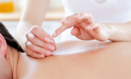 Acupuncture Consultation and One or Three Treatments at Acupuncture Solutions LLC (Up to 78% Off)