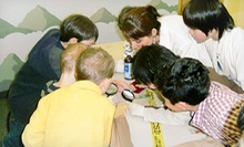 Four or Eight Kids' Science Classes at Chamelea (Half Off)