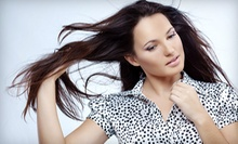 Haircut, Shampoo, and Style with Optional Full Color or Highlights at Southern Chic Salon (Up to 58% Off)