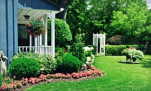 Onsite Landscaping Consultation with Option for Custom Design Draft from Tall Pines Landscaping, LLC (Up to 67% Off)