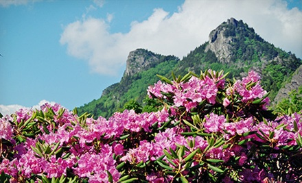 $20 for a Visit to Grandfather Mountain for Two (Up to $36 Value)