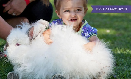 Annual Petting Farm Fun Pass and Refillable Feed Cup for One or Two at Hunt Club Farm (Up to 42% Off)