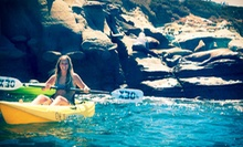 60-Minute Snorkel Tour or 90-Minute Sea-Cave Tour from OEX La Jolla (Up to 61% Off)