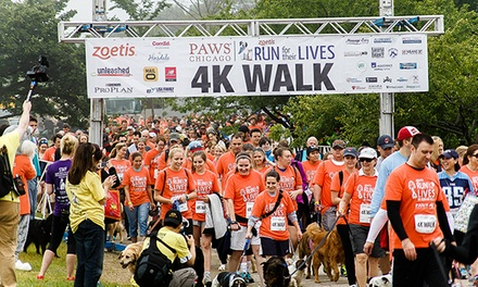 Registration for One or Two for Run For Their Lives on June 14 from PAWS Chicago (Up to 50% Off)
