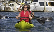 2.5-Hour Tour or 3-Hour Rental in a Single or Tandem Kayak from Chula Vista Kayak (Up to 51% Off)