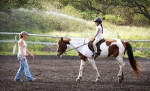 One-Hour Group Horseback-Riding Lesson, or Trail Ride for One, Two, or Four from Koko Crater Stables (Up to 55% Off)