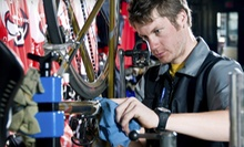 Bike Tune-Up or Two-Hour Bike Rental for Two at Rollin' Cycles (Up to 51% Off)