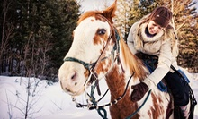 One-Hour Horseback Ride for One, Two, or Four with Hot Chocolate from Estes Park Horseback Riding (Up to 54% Off)