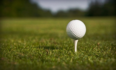 Golf Outing for Two or Golf Lessons at Meadowlawn Golf Course (Up to 52% Off). Three Options Available.