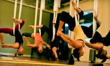 5 or 10 Yoga, Dance, or Aerial Arts Classes at Aerial Revolution Entertainment (54% Off)
