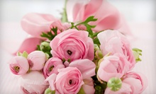 $19.99 for $40 Worth of Plant and Flower Arrangements at Angels Petals