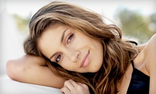 Haircut, Single-Process Color, or Partial Highlights at The Salon at Westchester, Inc. (Up to 73% Off)