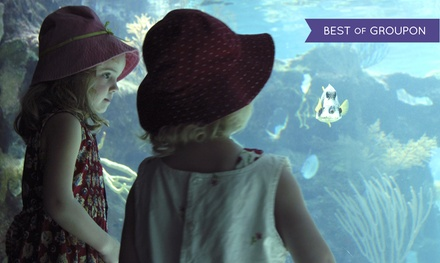 Ripley's Believe It or Not!, Oregon Undersea Garden, and The Wax Works for Two or Four (Up to 51% Off)