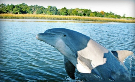 $ 65 for a 90-Minute Dolphin-Watching Tour or Sunset Cruise for Two from Captains Source ($ 150 Value)