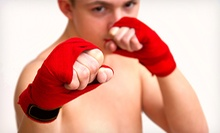5 or 10 Children's or Adult Martial Arts Classes at Omni Martial Arts (Up to 84% Off)