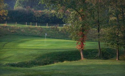 9 or 18 Holes of Golf for Two or Four with Cart, Range Balls, and Lunch at Fallen Timbers Fairways (Up to 60% Off)