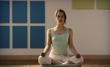 10 or 20 Yoga Classes at Yoga Shelter (Up to 87% Off). Five Locations Available.