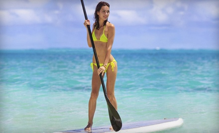 One- or Two-Hour Paddleboard Rental with Optional Instruction from Watersports Miami (Up to 62% Off)