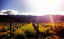 Wine Tasting for Two or Four at Dom Whitney Wines (Half Off)