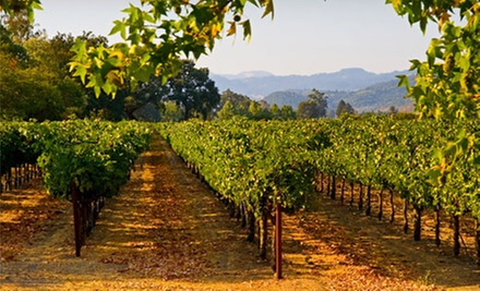 Wine Tour of Napa Valley with Gourmet Boxed Lunch for One or Two from Rixos Limousine & Wine Tours (54% Off)
