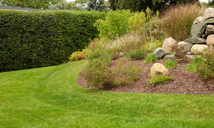 Four or Eight Mowing Sessions from Dema's Landscaping Services (Up to 62% Off). Four Options Available.