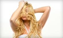 6- or 12-Week Laser Hair-Regrowth Program at Hair Trauma Center (Up to 82% Off)
