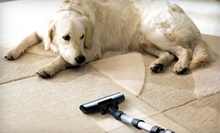 Upholstery Cleaning on Sofa or 300 Square Feet of Carpet Cleaning from Champion Carpet Cleaning (Up to 61% Off)