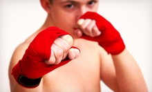 10 or 16 Martial Arts Lessons with Uniform at Vision Martial Arts (Up to 95% Off). 12 Options Available.