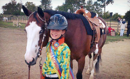 Horseback-Riding Lesson for One or Two at Madison Horse Connection (Up to 53% Off)