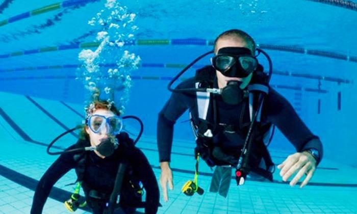 Bubble Blowers - Cape Town,: PADI DSD Intro-Dive Programmes at Bubble Blowers