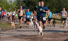 Entry to 1- or 3.1-Mile Petco 5K9 Walk Run Wag With or Without Your Dog on August 4 (Up to 52% Off)