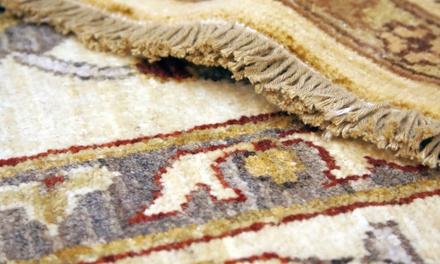 Carpet Touch coupon and deal