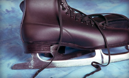 Ice-Skating for Two or Four or One Youth Ice-Skating Lesson at Winter Garden Ice Arena (Up to 63% Off)