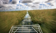 Airboat Tour and Alligator Show for Two or Private Airboat Tour for Four at Everglades Holiday Park (Up to 51% Off)