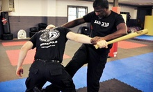 10 or 20 Krav Maga Classes, or 10 Women's Self Defense Classes at Krav Maga Minneapolis (Up to 75% Off)