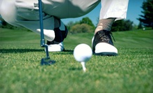 5 or 10 Baskets of Range Balls, or One-Hour Golf Lesson with 1 Basket of Range Balls at The Range (Up to 51% Off)