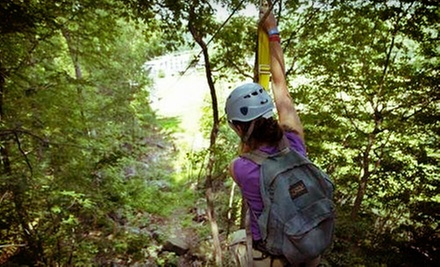 Zipline Canopy Tour for One or Two at Spring Mountain Adventures (Up to 53% Off). Four Options Available.