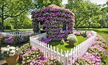 $6 to Visit Alice's Adventures in Wonderland Flower Village at Dallas Arboretum and Botanical Gardens (Up to $15 Value)