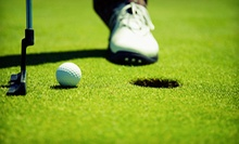 Three 30- or 60-Minute Golf Lessons with Video Analysis at Cause-N-Effect Golf (Up to 56% Off)
