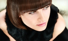 Cut, Shampoo, and Style with Optional Touchup Color or Partial Highlights at E.A. Wells Hair Design (Up to 64% Off)