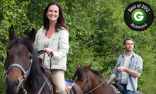 One Private Horseback-Riding Lesson or One or Three Group Riding Lessons at Zephyrs Way Stable (Up to 53% Off)