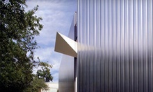 One-Year Individual, Household, or Friend Membership to Contemporary Arts Museum Houston (Up to 60% Off)