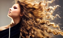 Men's or Women's Cut, Partial Highlights, or Full Color at Altitude Hair Design (Up to 60% Off)