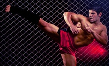 Five Classes or a One-Month Membership at 300 MMA Fitness (Up to 63% Off)