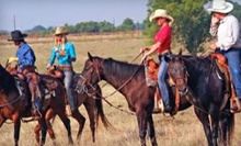 Trail Ride for Two, Four, or Six with Optional Weekend Dinner at Beaumont Ranch (Up to 55% Off)