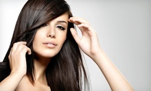 Women's Haircut and Style or Brazilian Blowout at Euro Nail Spa (Up to 55% Off)