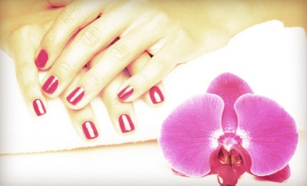 One or Three Gel Manicures at More Than Nails by Michele (Up to 57% Off)