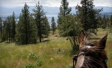 One-Hour Horseback Riding for Two or Four, or Farm Field Trip for Up to 10 at Hidden Haven Farms (Up to 63% Off)
